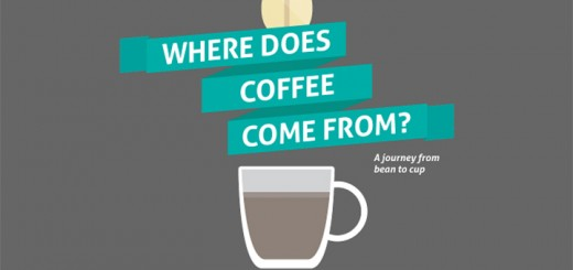 Where Does Coffee Come From infographic