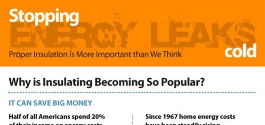 energy leaks infographic